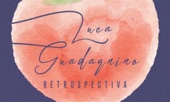 Retrospectiva de Luca Guadagnino en Cinemanía.
